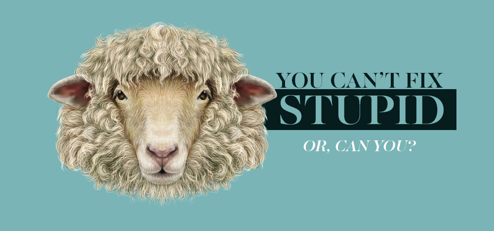 You Can\'t Fix Stupid! (Or, Can You?)